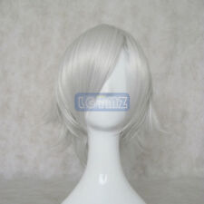 Gin Tama SilverSoul Gintoki Sakata/Vampire Knight-KIRYU ZERO Wig Cosplay Wigs