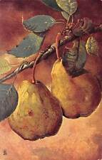 """Pears Branch, Still Life, Fruits """"Connoisseur"""""""