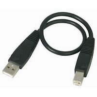 StarTech USB2HAB1 StarTech.com 1 ft USB 2.0 A to B Cable - M/M - Type A Male USB