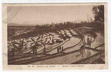 Sawah Terrace Irrigated Rice Garoet West Java Indonesia Dutch postcard