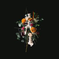 Elevation Worship • Graves Into Gardens CD 2020 Elevation Worship •• NEW ••