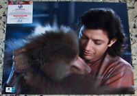 CLEARANCE SALE! Jeff Goldblum Signed Autographed 11x14 Photo GV GA GAI COA!