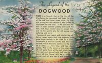 "*Postcard-""Legend of The Dogwood"" (Has .04 Stamp)"