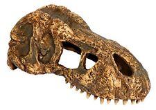 Exo Terra Décoration Crâne de T-rex - pour Terrarium