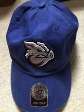 Lehigh Valley Ironpigs One Size Hat Royal