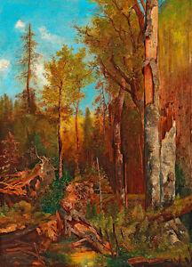 Aus den Forsten des Fürsten Schwarzenberg 75cm x 54cm Canvas Print