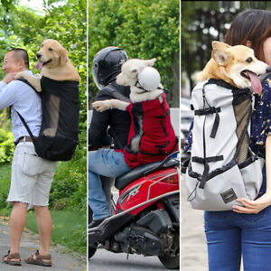 Breathable Head Out Dog Carrier Backpack K9 Sport Sack for Bike Camping Mesh