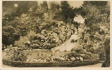 1920's RPPC Pair From a Garden Show Out West