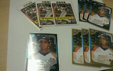 2005 Nelson Cruz Rookie Investment Lot 10 Cards