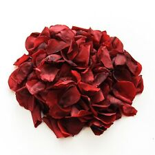 Burgundy rose petals for wedding confetti decoration, preserved