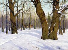 Imágenes de inventario fotos JPEG fotografías 2 DVD los grandes pintores paisaje ruso