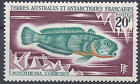FRANCIA TAAF Nº36 PECES NEUF LUXE GOMA ORIGINAL MNH