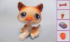LITTLEST PET SHOP LPS #37 WHITE BROWN HUSKY DOG+ 1 FREE Access. 100% Authentic