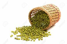 Organic Mung Bean - 20 Seeds - Grow your own sprouting seeds