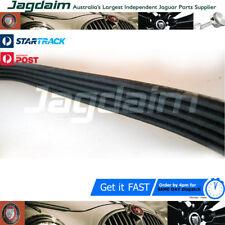 Jaguar Supercharged X300 alternator belt.NBD3700BA*