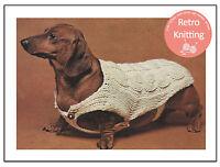 Dachshund Dog Coat Knitting Pattern  - Copy