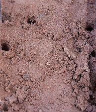 Ant Farm Sand 1 Kilo Bags