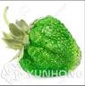 Green Strawberry Juicy Fruit Bonsai Plants Garden Super Big NEW U 500 Pcs Seeds