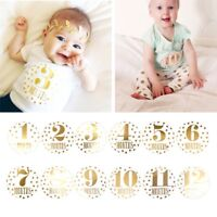 Baby Pregnant Women Monthly Photograph Sticker Fun Month 1-12 Milestone Stickers