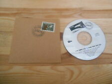 CD Indie LAIKA - 44 Robbers/Coming Down Glass (2) canzone MCD Too Pure CB
