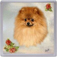 Pomeranian Coaster No 1 by Starprint