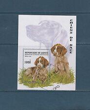Guinée république  bloc   faune  chiens    1996  num : 115   oblitéré