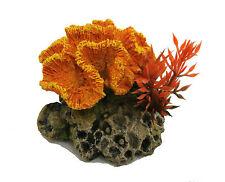 Orange Ondulé Corail Sur un Rocher Base avec Plante Décoration D'Aquarium