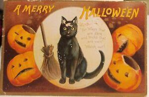 Antique Halloween Postcard Black Cat 1909 Vintage