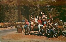 Vintage Postcard Crystal Lake CA Family group on wagon waving Azusa Canyon
