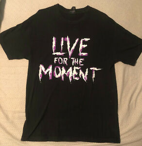 Hardy Boyz Live for the Moment Large Vintage WWE WWF Wrestling T-Shirt