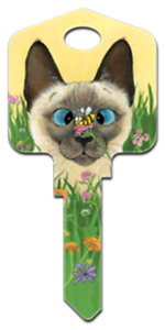 Bee Wildered House Key - Paws & Claws - Gary Patterson - Cats - Locks - Keys