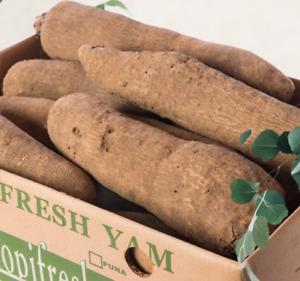 100% Organic Ghana Yam Tuber - ( 5 Lb. 10 Lb. 15 Lb & 20 Lb.)