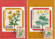 Maximumpostkarten Portugal Azoren