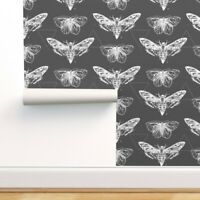 Removable Water-Activated Wallpaper Moths White Etomology Triangles Insects Bugs