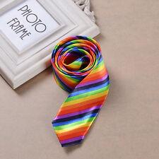 Rainbow Gay Tie NeckTie Bowtie Lgbt Lesbian Pride Wedding Costume Accessories