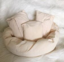 Beanbag/Pillow
