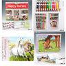 Depesche Top Model Horses Dreams, Miss Melody Colouring,Sticker Books & Pencils