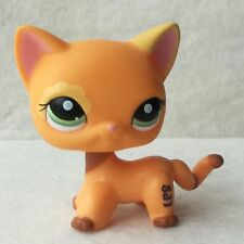 Littlest Pet Shop Animal Collection LPS Toy # 1643 Chat Europeen Cat