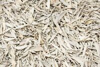 California White Sage LEAVES ONLY Incense ( 2 lb) #JC-3