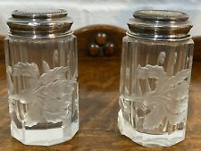 Silver Salt And Pepper Pots With Mother Of Pearl And Etched Frosted Glass