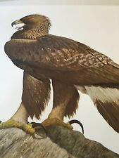 Ray Harm ( Golden Eagle) #545 signed lithograph print Frame House Gallery