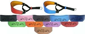 Whippet Greyhound Leather Padded Dog Collar Martingale Collar Running Hound