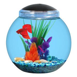 Aquarium Kit 1 Gallon Globe Fish Bowl 7 Colors Led Light Hood w/ Light Seetings