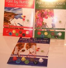A4 PAINT BY NUMBERS ADULT,Creative SERIES WITH PAINTS & BRUSH FUN.3 Designs.NEW