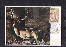 carte  1er jour   faune nature cerf  Sologne  Romorantin     1972