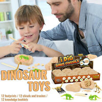 Digging Fossils Dinosaur Eggs Adventure Surprising Educational Kids Toys Gift CH