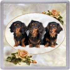 Dachshund (Long Haired) Coaster No 5 by Starprint