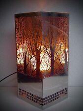 Colonne à flamme cheminée électrique éclairage inox 30cm Firebox edelstahl441