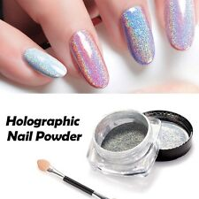 Holographic Rainbow Nails Effects Powder Laster Pigment Polish Kit Mica Powder