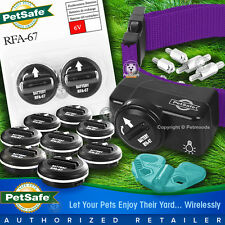 PetSafe PIF-275-19 Wireless Fence Dog Collar Receiver 11 Batteries Purple Strap